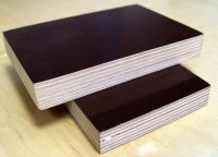 16mm film faced plywood