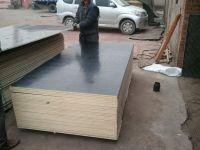 wbp glue film faced plywood