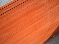 all kinds of film faced plywood
