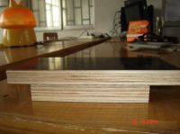Plywood Panel For Furniture (12mm / 15mm / 18mm)