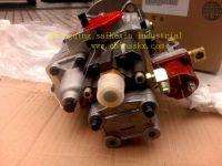 injector pump 3098495 CUMMINS diesel engine k19k38NT855M11  for CCEC/ISDE