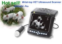 Digital Wrist-Top Veterinary Ultrasound Scanner (BW560V)