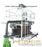 Granule Palletizing Packaging Machine