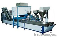 Packing Machine (Nuts, Fruit Chips, Grain)