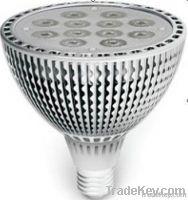 LED PAR38, E27, 12X2W