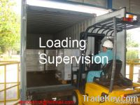 LOADING CONTAINER AND SHIP INSPECTION, SURVEYS
