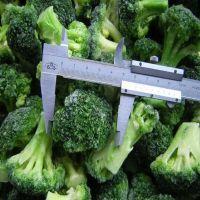 2013 New Crop Frozen Broccoli