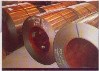 Galvanized Sheets (Galvanized Steel Coils)