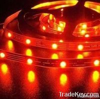 LED Strips 3528 60leds/m