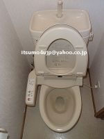 Digital washlet