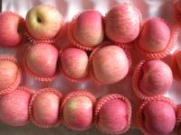 fresh fruit from Shaanxi China
