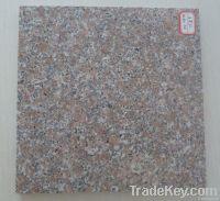 China red granite / red granite tile and slab