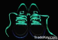 Sell Luminated Shoe Laces- Glow in dark