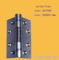 stainless steel spring hinge