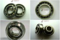 Hybrid Bearing Series