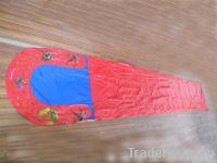 Water Slip Slide