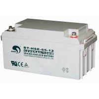 AGM Battery 12V65Ah