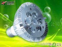 PAR30 led spotlight