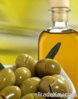 Spanish Olive Oil,extra virgin olives oil importers,extra virgin olives oil buyers,extra virgin olives oil importer,buy olives oil,olives oil buyer