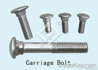 stainless steel bolt(hex, square, round, *****)