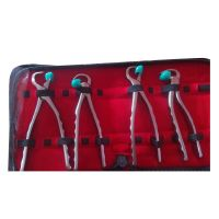 Dental Extracting Physics Forceps 4 piece Set