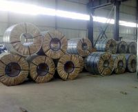 Prime Hot Dipped Galvanised Steel Sheet Coil