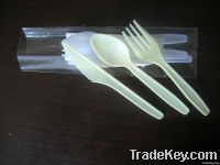 Disposable Fork  Spoon