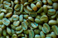 YEMENI GREEN COFFEE BEAN