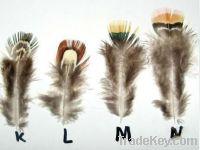 Duck Feather Hair