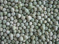 Yellow Peas, dun peas, green peas