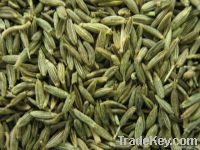 fennel seeds, cummin seeds, spice, spics, cooking spice,