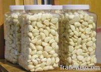 2011 Chinese fresh garlic clove