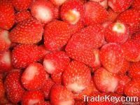 2011 frozen strawberry