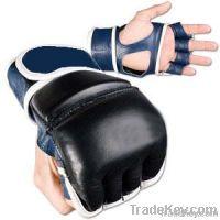 MMA Gloves 1
