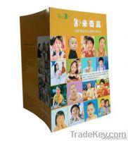 LIDI folded brochure printing for children school