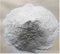 Hydroxypropyl Methylcellulose (HPMC)