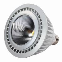 16W LED PAR38 Bulb Light P Series