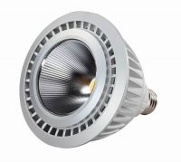 LED PAR30 Lighting 10w (HZ-DBP30-10W)