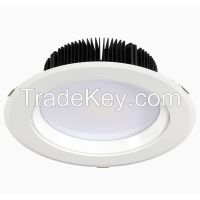 8 inch Dimmable LED Downlight IP45