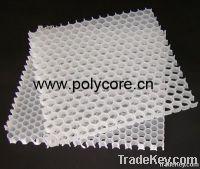 PP honeycomb