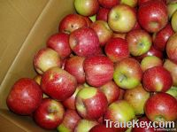 Fresh Jiguan Apple