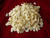 Kosher Certified High Quality Garlic Flake