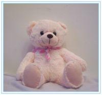 Teddy Bear Plush Toys