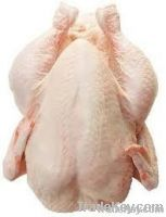 Whole Chicken | Export Chicken Meat | Chicken Meat Suppliers | Poultry Meat Exporters | Chicken Pieces Traders | Processed Chicken Meat Buyers | Frozen Poultry Meat Wholesalers | Halal Chicken | Low Price Freeze Chicken Wings | Best Buy Chicken Parts | Bu