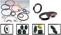 O-rings and Oil Seals