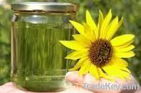 Sunflower Oil   Rapeseed Oil