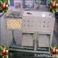 semi-automatic cashew shelling machine
