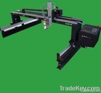 SNR-QL2-2560 gantry cnc cutting machine