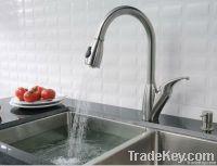 Spray Kitchen Faucet