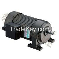 Precision Gear Motor (Foot-Mount Type)